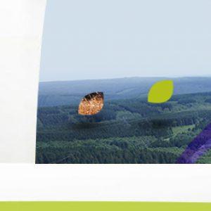 Header - Communauté de Communes Vallées et Plateau d'Ardenne