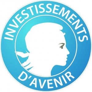 logo investissement d'avenir - Vallées et Plateau d'Ardenne - Communauté de communes